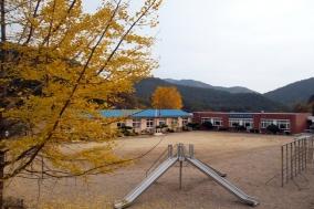 금강송면 삼근초등학교 왕피분교장 '역사속으로'