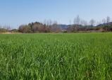 울진군, 친환경농업 실천을 위한 유기농업자재 공급